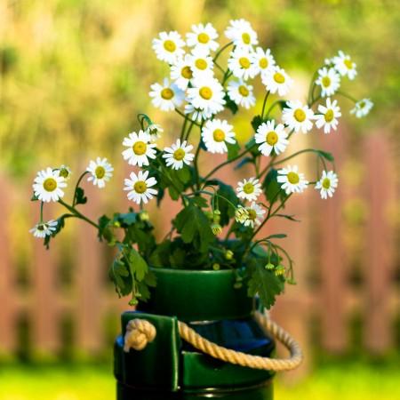 نتيجه تصويري براي گلدان هاي بسيار زيبا